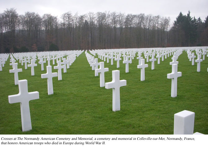 Crosses at Normandy